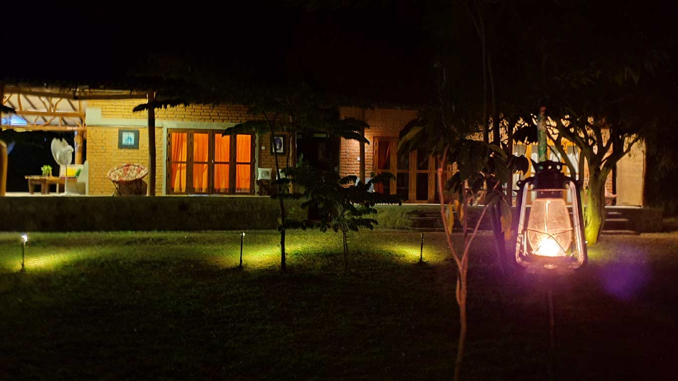 Nature and lamps - The Ibis Wilpattu
