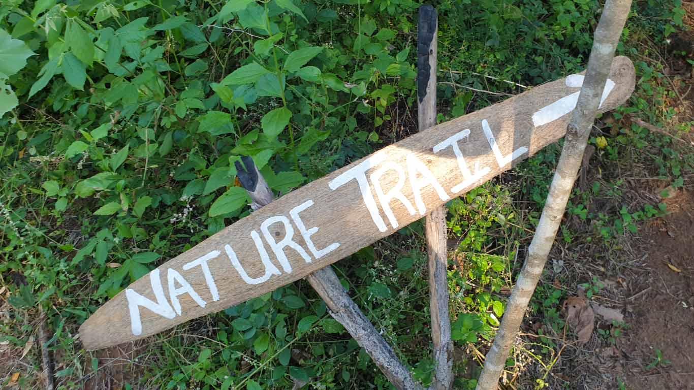 Nature Travel - The Ibis Wilpattu